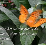 How Do We Arrive at Excellence? Day 17 of 21 days of Action